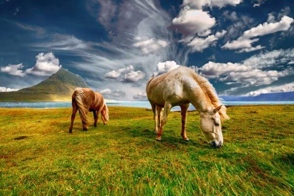 Ισλανδία Universe Travel 1
