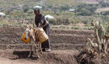 αιθιοπία universe travel 2